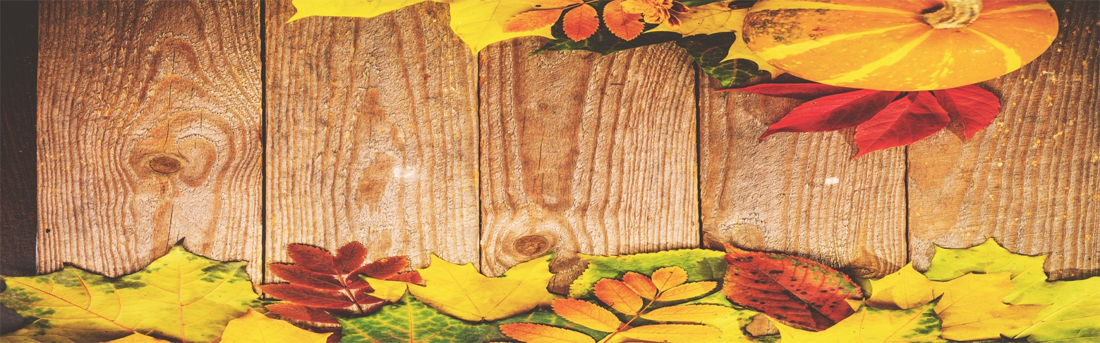 autumn holiday - blog - header