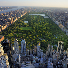 Where To Go When Luxury Holidays New York