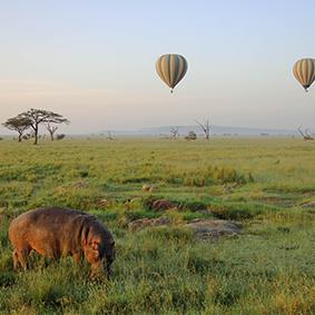 Where To Go When Luxury Holidays Tanzania