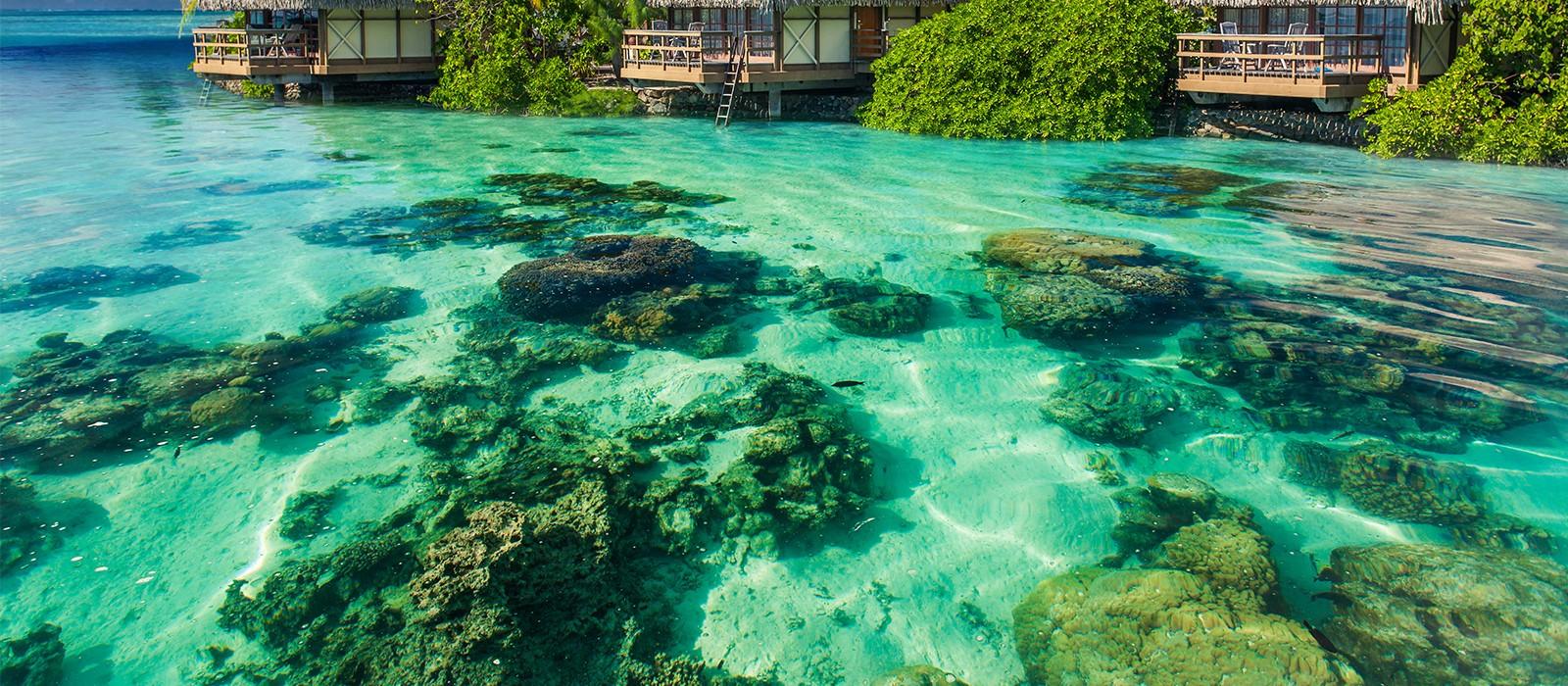 Header - Pearl Beach Resort - Luxury Bora Bora Holidays