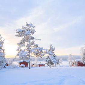 Lapland Holidays - Lapland Christmas Holidays