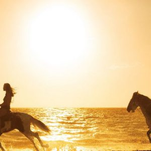Luxury Dominican Republic Holiday Packages Secrets Royal Beach Punta Cana Horses