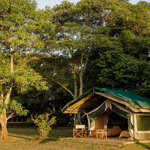 Luxury South Africa Holiday Packages Governors Camp, Kenya Family Tent
