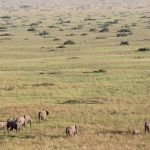 Luxury South Africa Holiday Packages Governors Camp, Kenya Views Of Masai Mara From Above