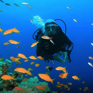 snorkeling - Catalonia Yucatan Beach - Luxury Mexico Holiday Packages