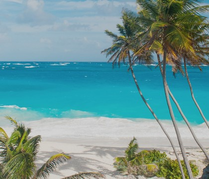 a picture of Barbados