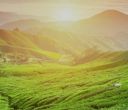 a picture of Sri Lanka