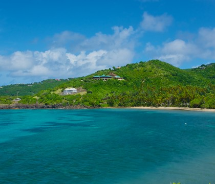 a picture of St Vincent & Grenadines