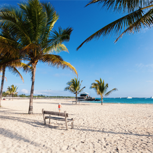 Isabela Island 3 South America Holiday Packages