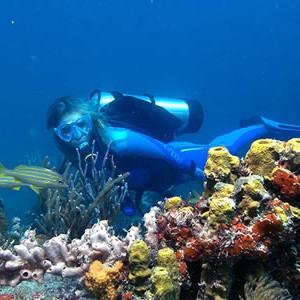 Petit-St-Vincent-Diving