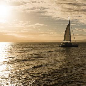 catamaran antigua