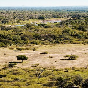 lion-sands-game-reserve-south-africa-safari-holiday-chalkley-reserve
