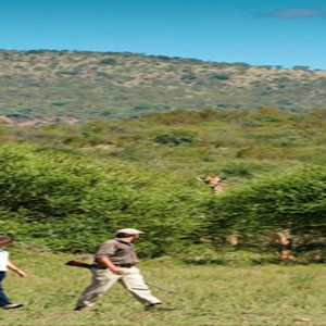 madikwe-safari-lodge-south-africa-holiday-bush-walk