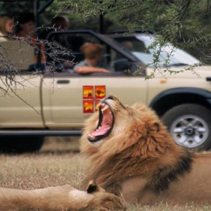 the-palace-of-the-lost-city-south-africa-holidays-safari