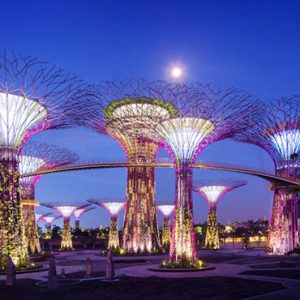 Marina Bay Sands Luxury Singapore Holiday Packages Gardens By The Bay Attraction