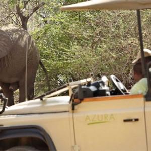 safari - Azura Selous Game Reserve - Luxuxry Tanzania Holidays