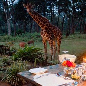 candlelit dinner - Giraffe Manor - Luxury Kenyan Honeymoon Packages