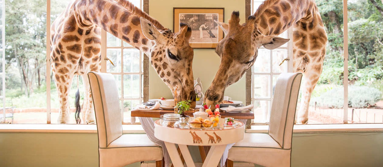 header - Giraffe Manor - Luxury Kenyan Honeymoon Packages