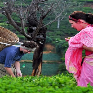 Heritance Tea Factory - Luxury Sri Lanka Holiday Packages - Tea Factory
