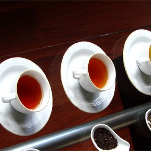 Heritance Tea Factory - Luxury Sri Lanka Holiday Packages - Tea tasting