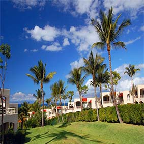Palms at Wailea Maui by Outrigger - Luxury Hawaii holiday packages - thumbnail