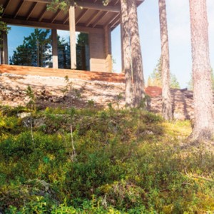 Arctic Glass House - arctic treehouse hotel - luxury finland holiday pckages