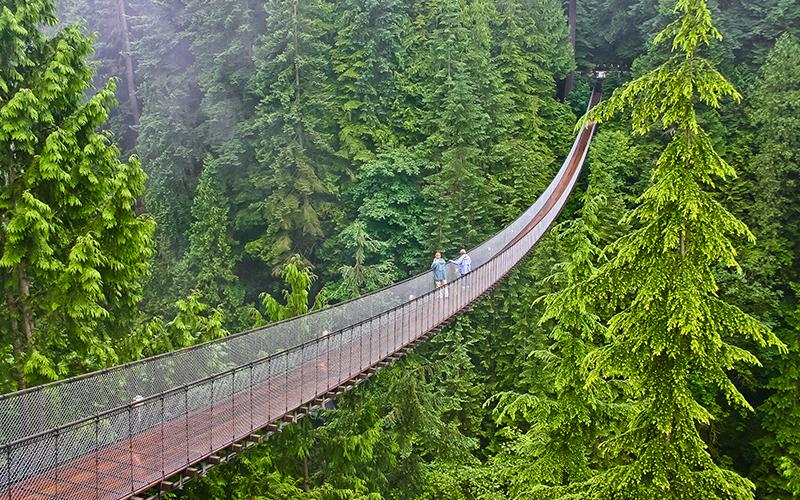 Capilano Suspension Bridge The Most Beautiful Sights In Canada