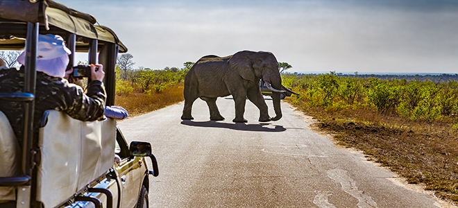 South Africa Bucket List Holidays For Families Luxury Family Holiday Packages