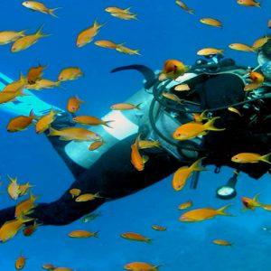 Kuramathi Maldives Luxury Luxury Maldives Holiday Packages Scuba Diving