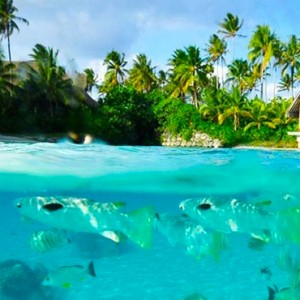 luxury bora bora holiday packages - intercontinental bora bora resort and thalasso spa - lagoonarium