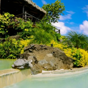 Luxury Cook Islands Holiday Packages Pacific Resort Aitutaki Pool 5