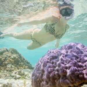 Luxury Cook Islands Holiday Packages Pacific Resort Aitutaki Snorkeling
