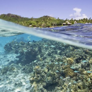 Luxury Cook Islands Holiday Packages Pacific Resort Aitutaki Snorkeling 2