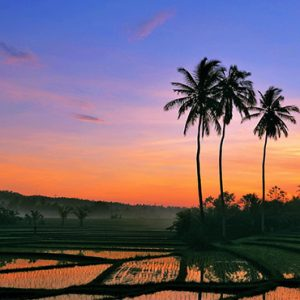 Bali holiday Packages The Laguna Bali Local Attraction3