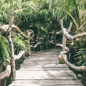 Luxury Mexico Holiday Packages Azulik Resort Mexico Pathway