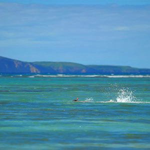 Canonnier Beachcomber Golf Resort And Spa Mauritius Luxury holiday Packages Snorkeling