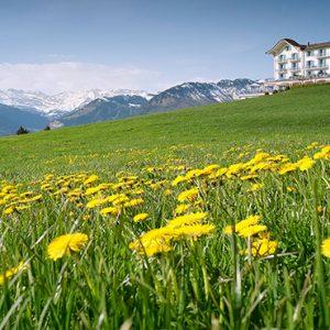 Luxury Switzerland Holiday Packages Hotel Villa Honegg Hotel Exterior1