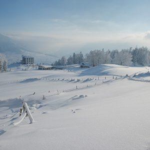 Luxury Switzerland Holiday Packages Hotel Villa Honegg Winter Landscape