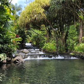 Luxury Costa Rica Group Tours South America Group Tour Packages Arenal 2