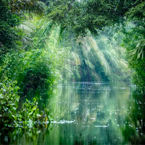 Luxury Costa Rica Group Tours South America Group Tour Packages Tortuguero