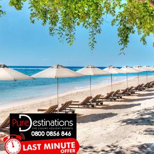 Westin Turtle Bay Resort & Spa Last Minute Dubai Holidays