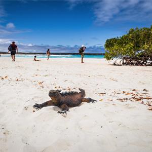 Santa Cruz Island South America Holiday Packages