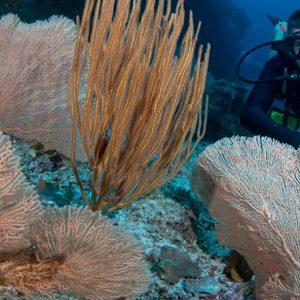 Luxury Maldives Holidays Fairmont Maldives Sirru Fen Fushi Scuba Diving