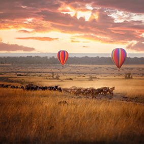Hot Air Balloon Safari Over The Masai Mara Thumbnail