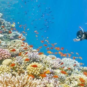 Luxury Mauritius Holiday Packages Anantara Iko Luxury Mauritius Resort & Villas Snorkelling
