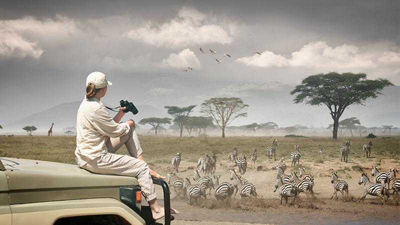 Serengeti National Park Safari Holiday Packages