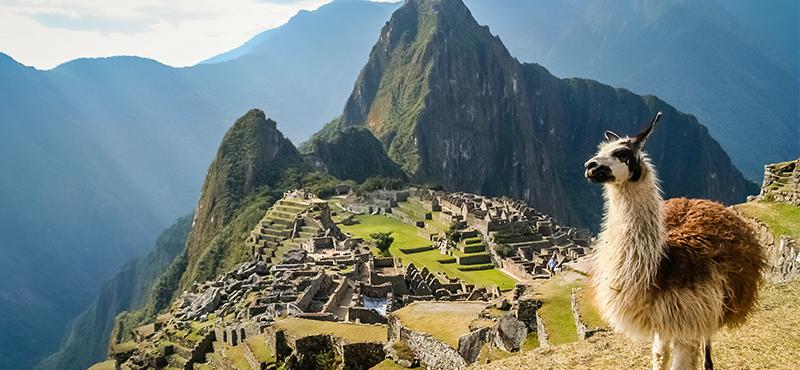 Machu Picchu With Llama Machu Picchu Holidays & Luxury Holidays