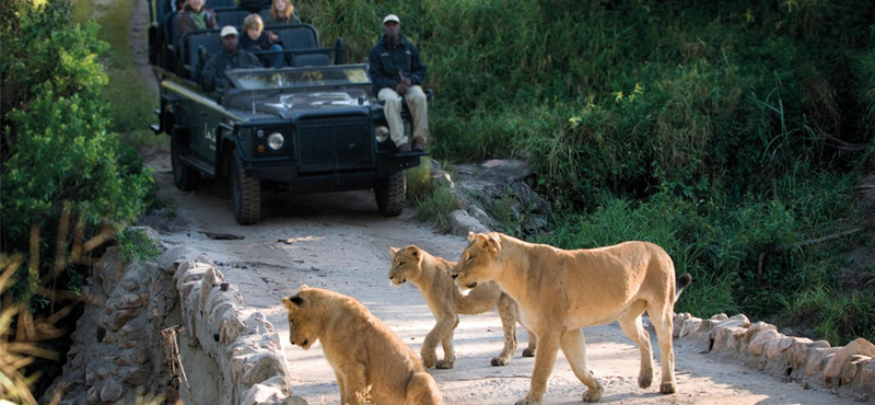 Lion Sands Game Reserve Safari Luxury Family Holidays